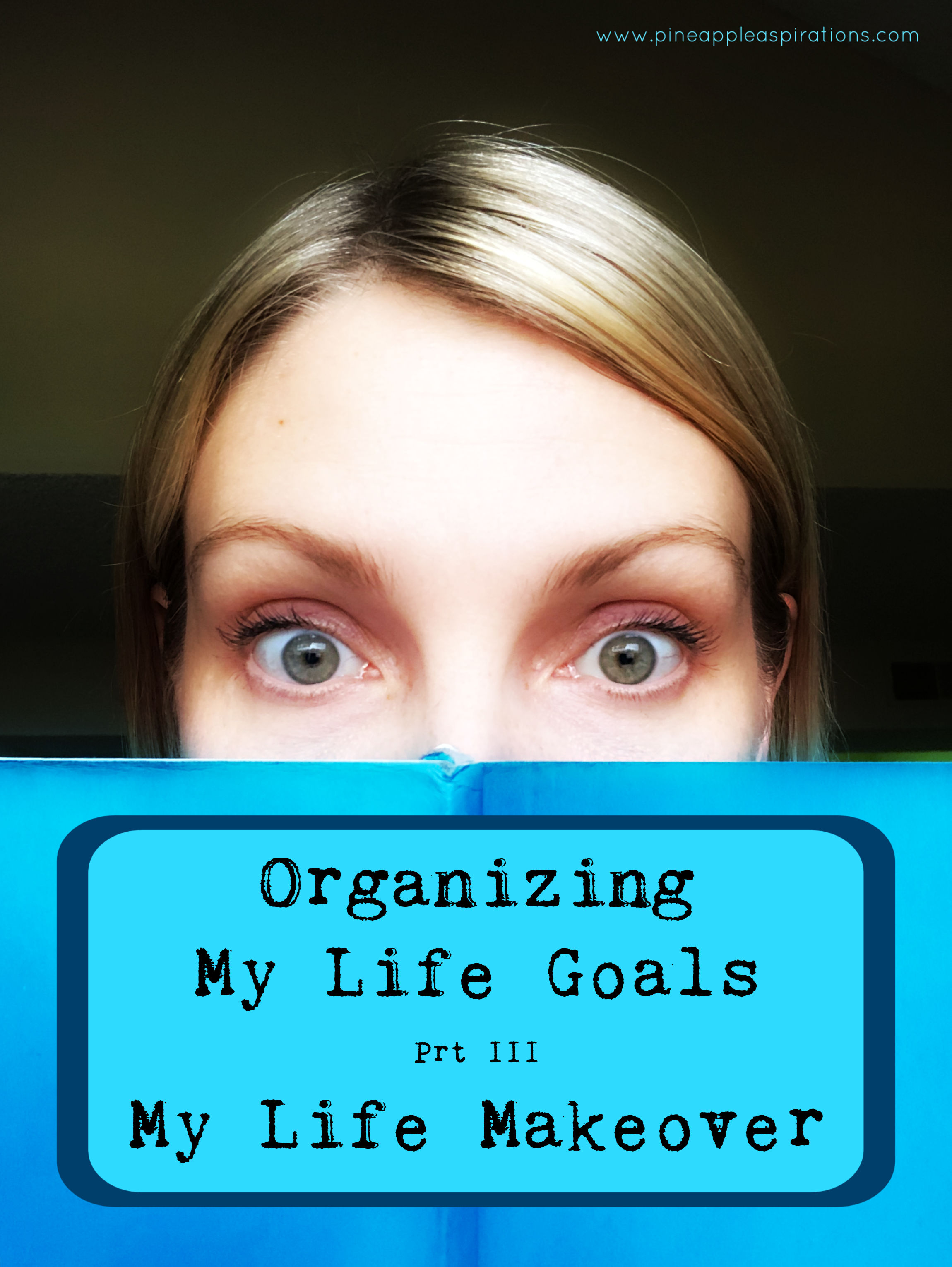 Organizing My Life Goals